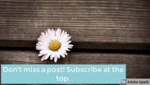 Subscribe to Comforts of Home Midwifery.